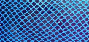 AS05 základní had modrý