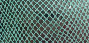 AS06 základní had zelený
